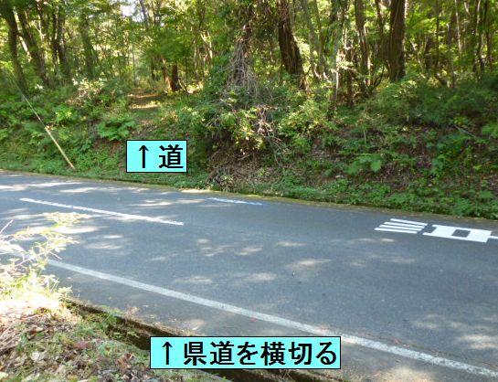 大山道を歩く(坊領道)_b0156456_18461143.jpg