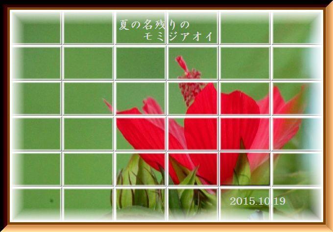 f0345156_16125524.jpg