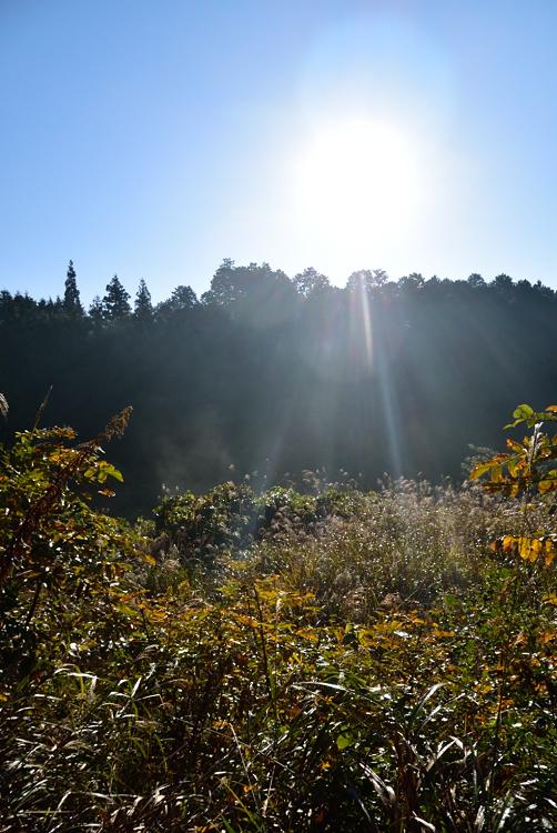 秋の楽しみ_d0231263_22513842.jpg
