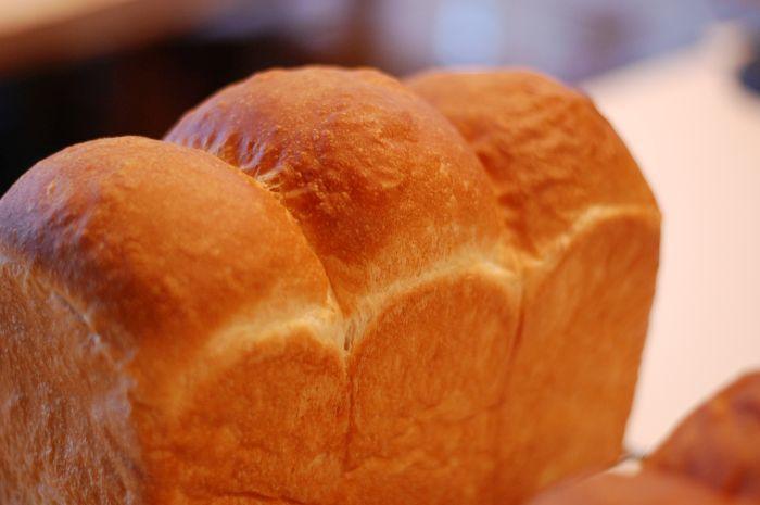大人のパン基礎レッスン 11月_f0224567_00355359.jpg