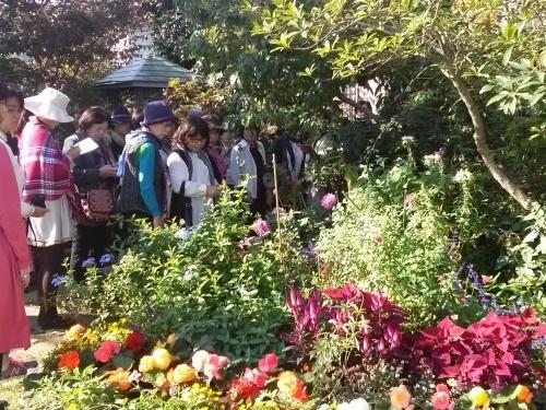 秋の庭_f0228967_23141387.jpg