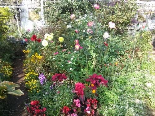 秋の庭_f0228967_23152116.jpg