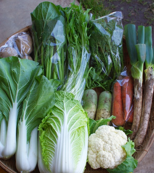 今週の野菜セット(10/20~10/24着)_c0110869_13135631.jpg