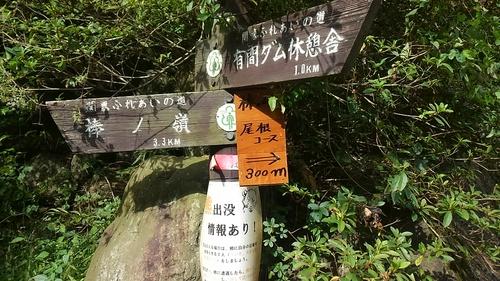 山登り_e0123469_042112.jpg