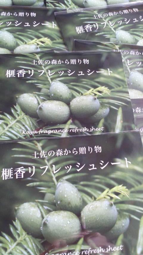 榧(かや)の香りのリフレッシュシート・土佐_d0339676_11250739.jpg