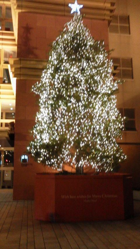 水行(すいぎょう)とクリスマスツリー_d0339676_11255576.jpg