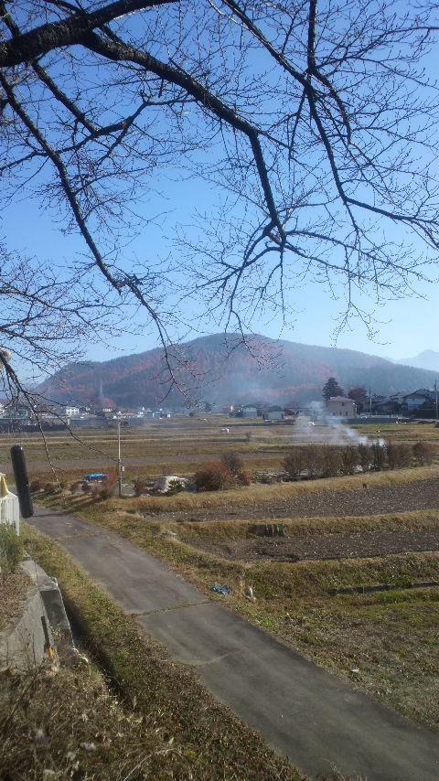 八ヶ岳_d0339676_11265480.jpg