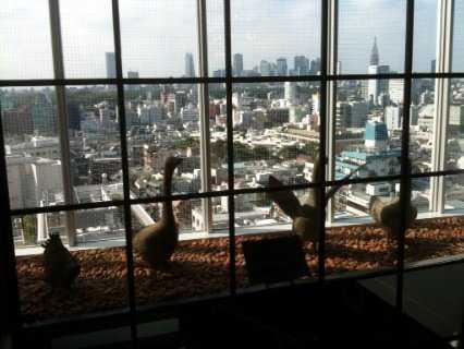 リヨンの味は、小京都の風情でありんす_d0339678_12380705.jpg