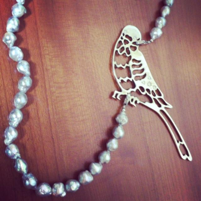 真珠とセキセイインコ_d0339885_12552947.jpg
