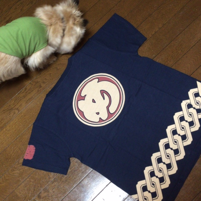 め組のTシャツ_d0339885_12552998.jpg