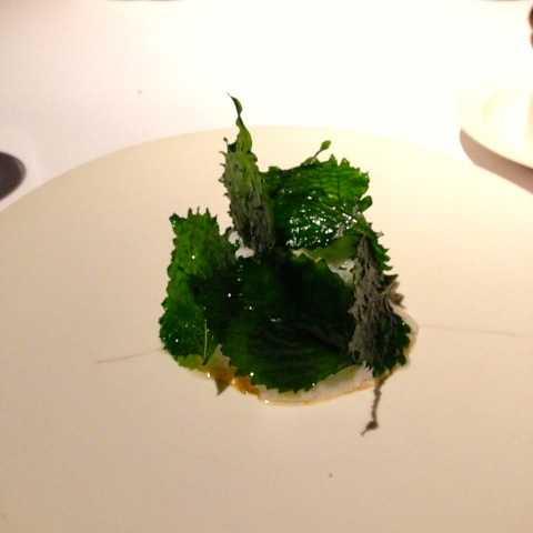 川魚や地元の野菜を使った最高のフレンチ:ユカワタン@軽井沢_d0339885_13045006.jpg