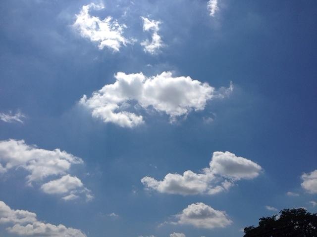 今日の雲たち_d0339885_13050749.jpg