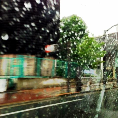 雷&大雨_d0339885_13053662.jpg
