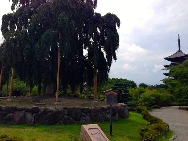 東寺で五重塔を眺めて、国宝の数々を観る:京都にて_d0339885_13055082.jpg