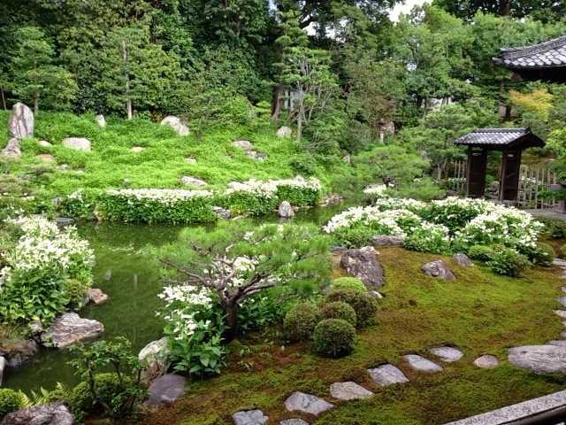 建仁寺で双龍図を見て、お隣の両足院で半夏生を眺める:京都にて_d0339885_13055306.jpg
