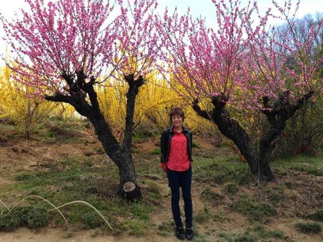 春の福島へ行ってきた(1):花見山・三春 滝桜で花見三昧♪_d0339885_13065590.jpg