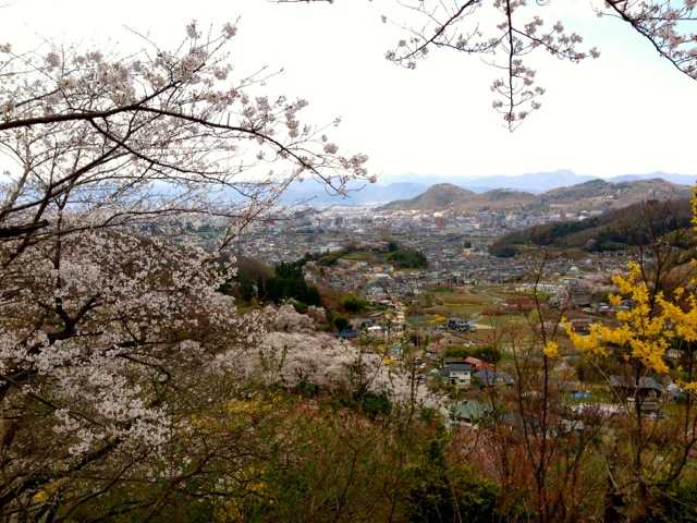 春の福島へ行ってきた(1):花見山・三春 滝桜で花見三昧♪_d0339885_13065592.jpg