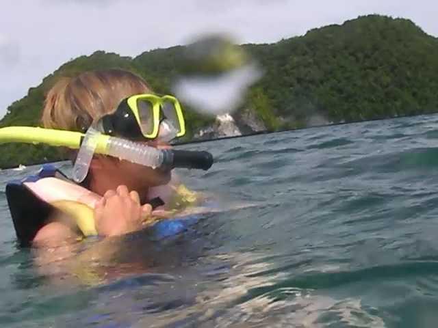 パラオでジェリーフィッシュと泳いだ!:ロックアイランドツアー_d0339885_13074832.jpg