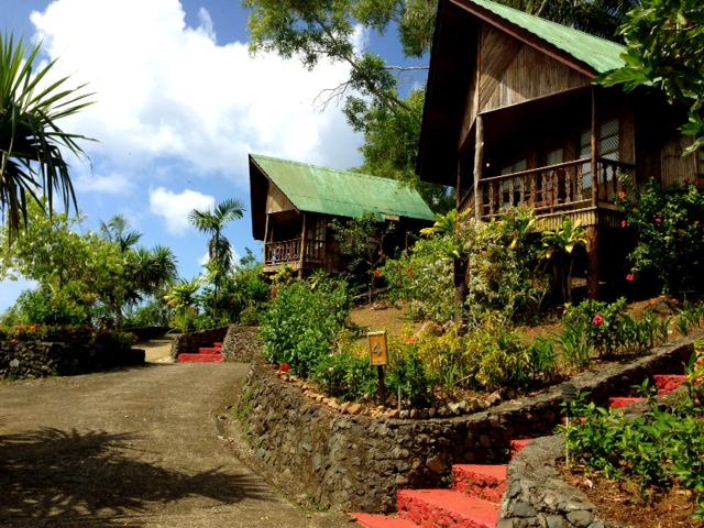 パラオの8部屋しか無い素朴なリゾートホテル:キャロラインズ リゾート_d0339885_13075049.jpg