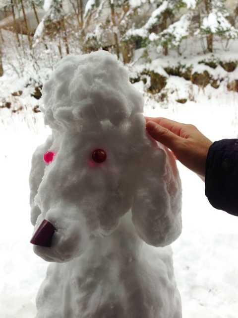 我ながらいい出来かもー♪愛犬たちの等身大雪だるま_d0339885_13083405.jpg