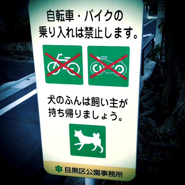 犬のしっぽ_d0339885_13083985.jpg