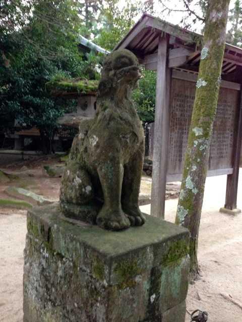 出雲の旅5:八重垣神社の鏡の池占い&美のお守り「椿ストラップ」_d0339885_13452201.jpg