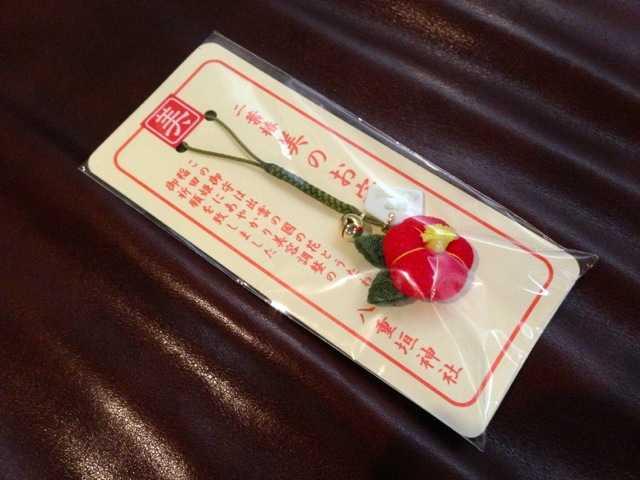 出雲の旅5:八重垣神社の鏡の池占い&美のお守り「椿ストラップ」_d0339885_13452262.jpg