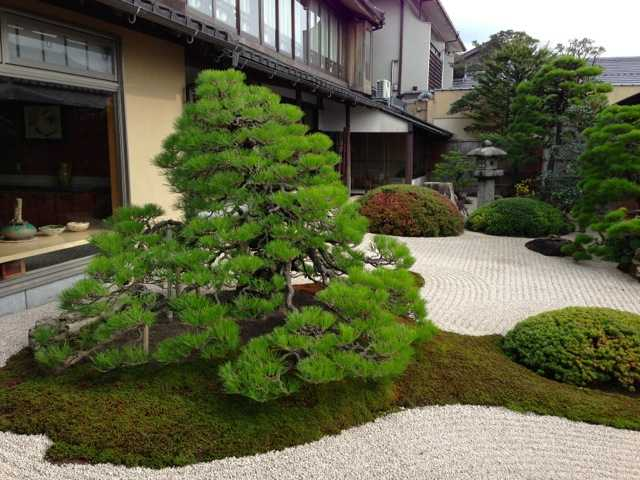 出雲の旅3:宍道湖と美しい庭園を眺めながら鯛めし「みな美」_d0339885_13452425.jpg