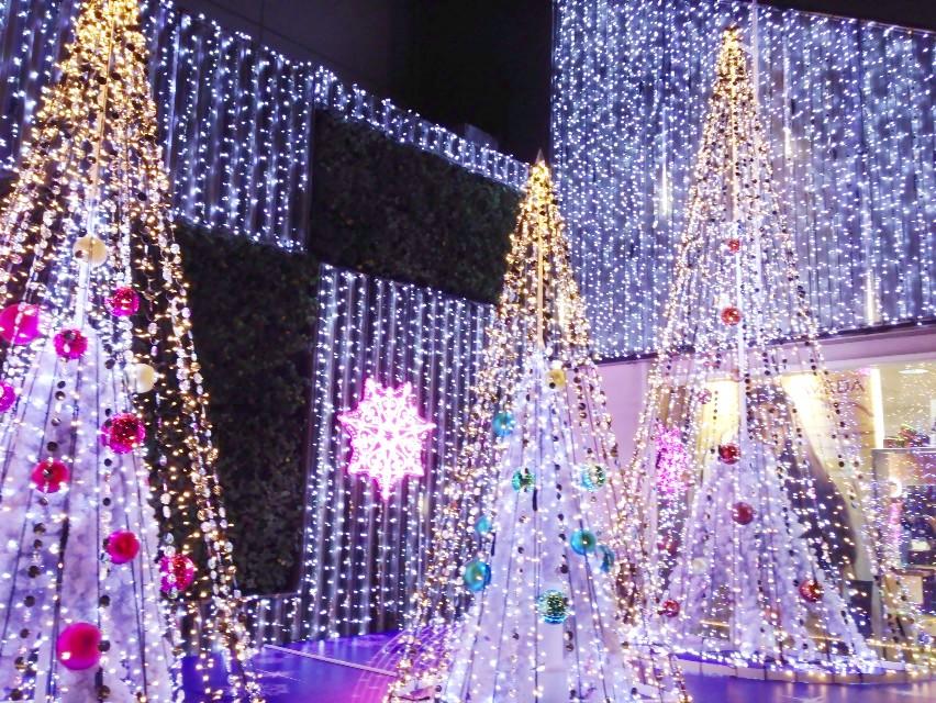クリスマス気分_d0339885_13454256.jpg