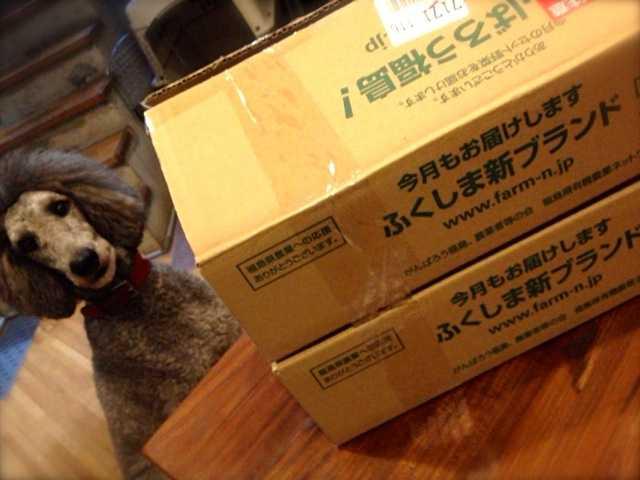 その月で最もおいしい福島県産農産物が届く:ふくしま新ブランド(二本松農園)_d0339885_13463663.jpg