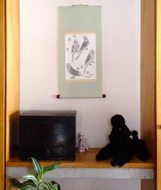 セキセイインコの掛け軸でお部屋の模様替え_d0339885_13473861.jpg