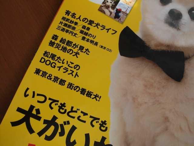 クレアドッグに私の描いた犬がいっぱい_d0339885_13491114.jpg