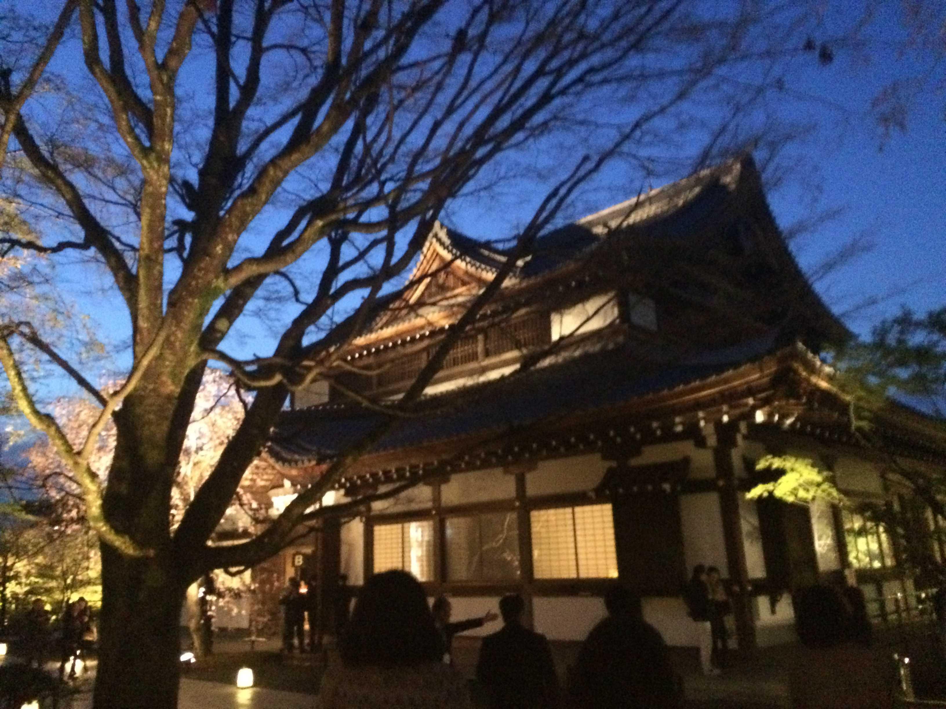サルヴァトーレ・フェラガモin京都_d0339890_12164567.jpg