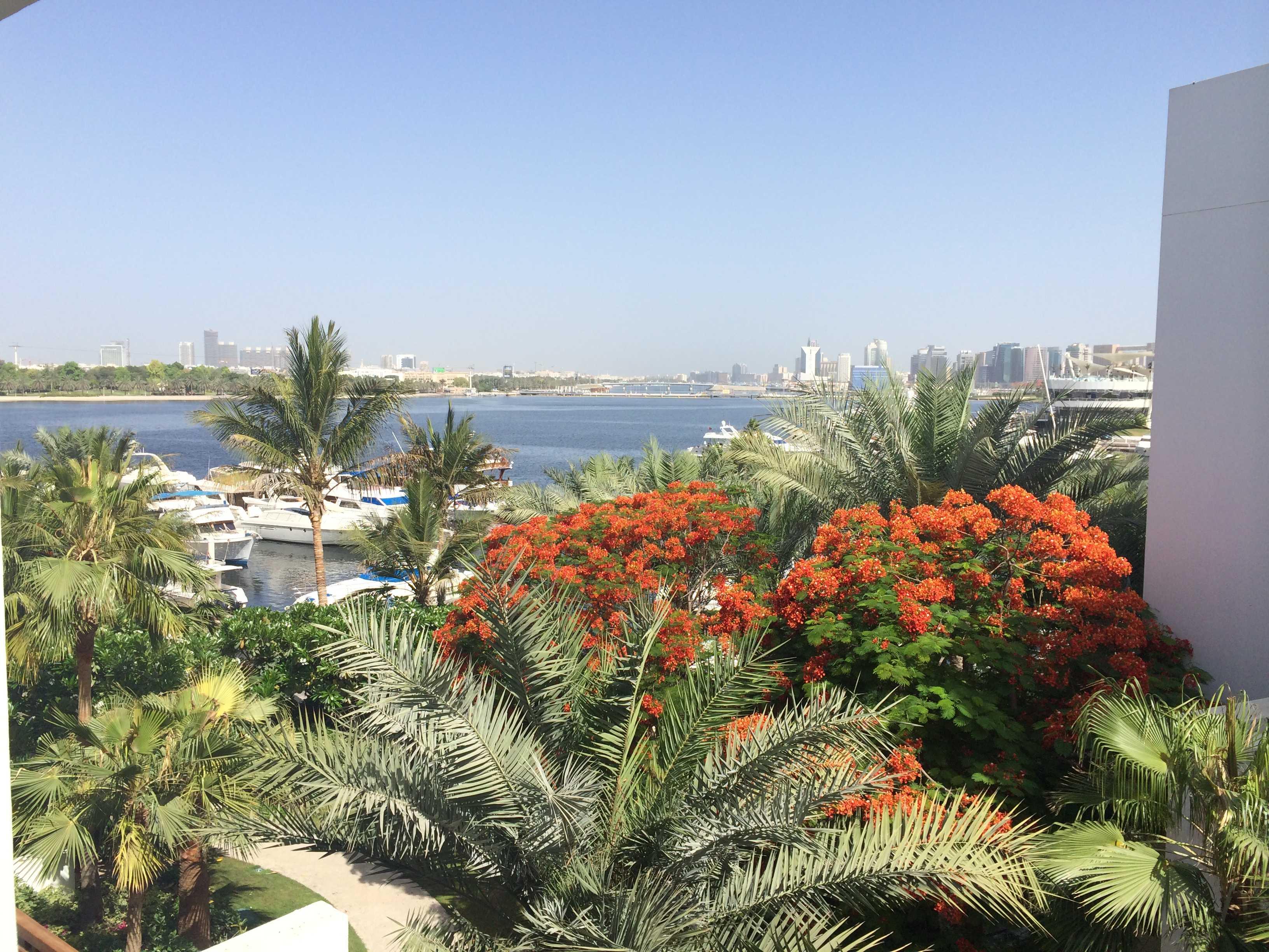 Dubaiに来ています_d0339890_12193423.jpg