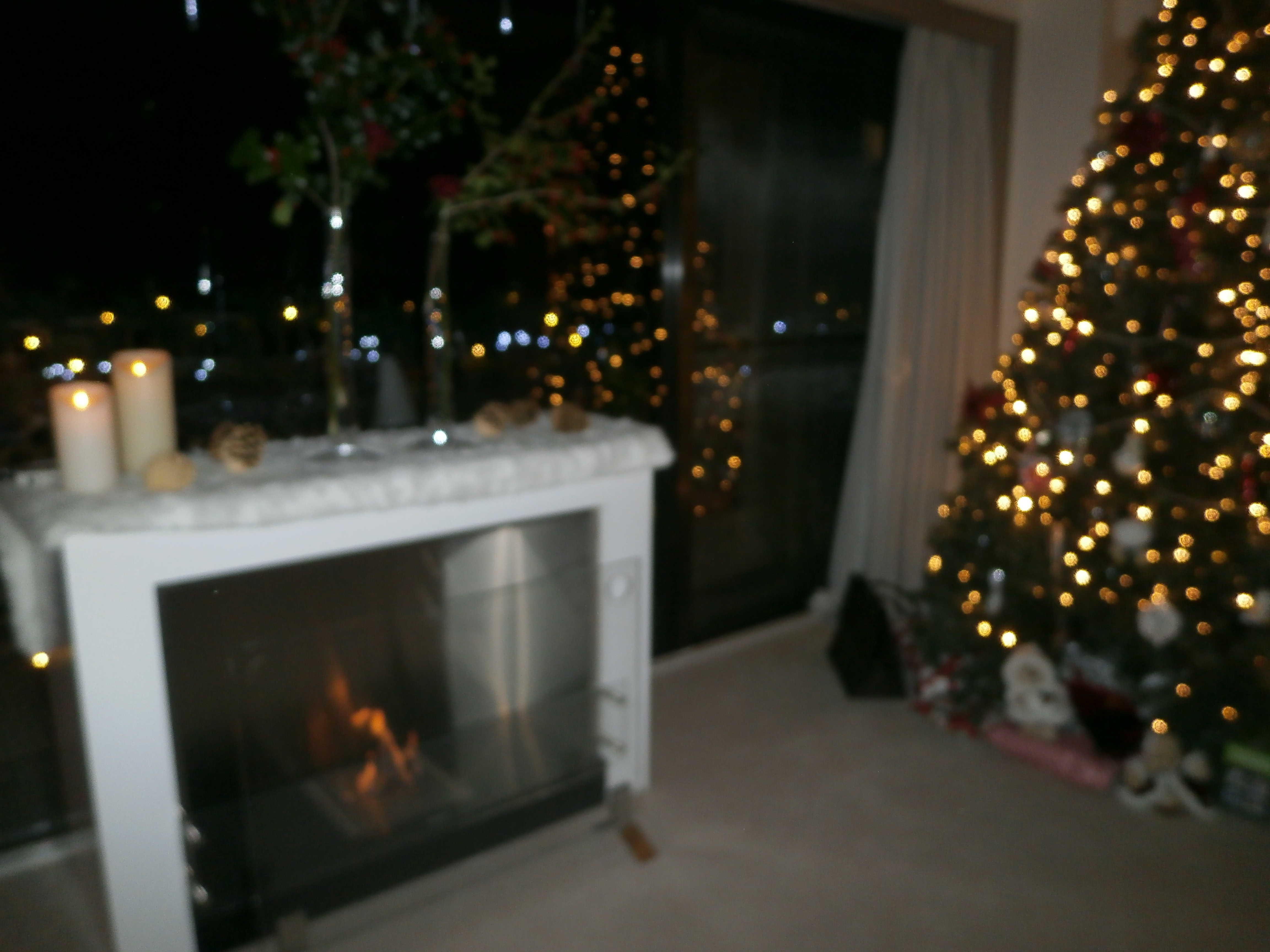 クリスマスパーティー♪_d0339890_12210555.jpg