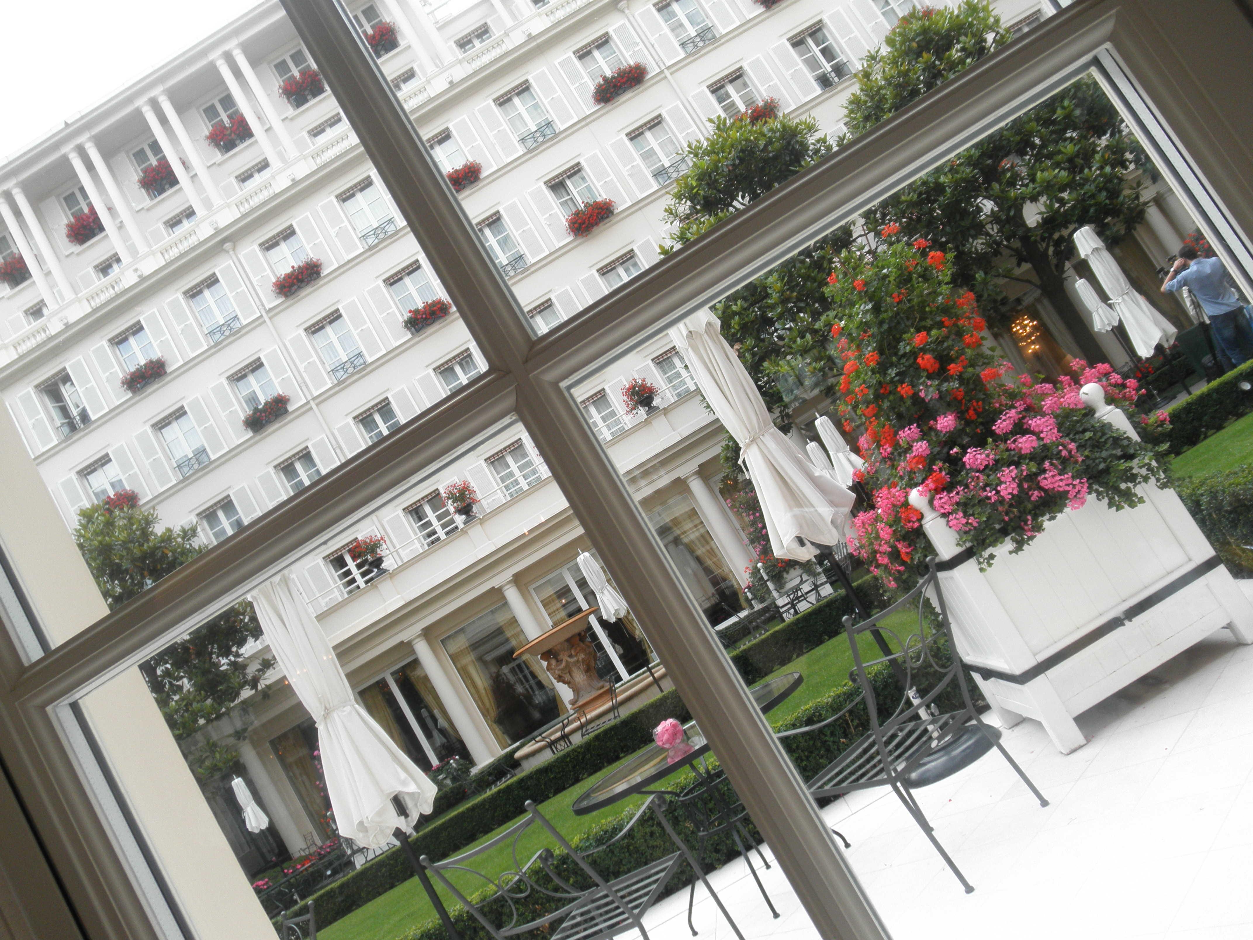 パリ LE BRISTOLもネコ_d0339890_12284922.jpg