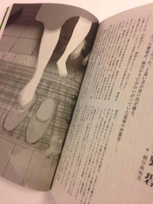 小説すばる11月号挿絵_f0172313_01072595.jpg