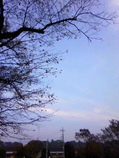 秋晴れの空に1964年オリンピックを思い出して。_b0255217_08154316.jpg