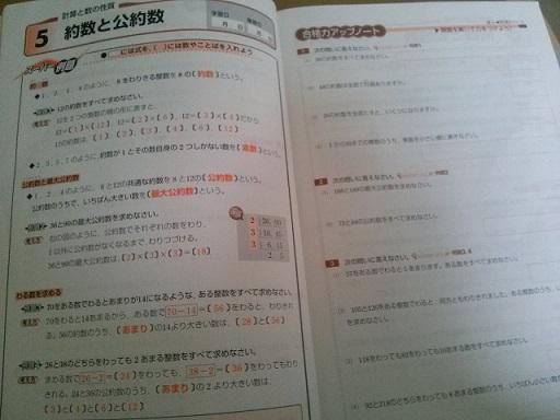 b0173222_964316.jpg