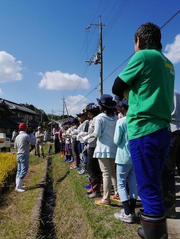 お子様向けイベント「稲刈り体験」を実施しました。_d0284244_17492246.jpg