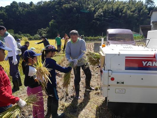 お子様向けイベント「稲刈り体験」を実施しました。_d0284244_17503139.jpg
