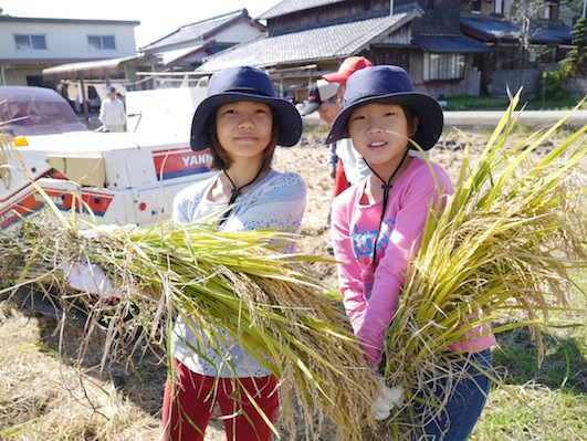 お子様向けイベント「稲刈り体験」を実施しました。_d0284244_1750914.jpg