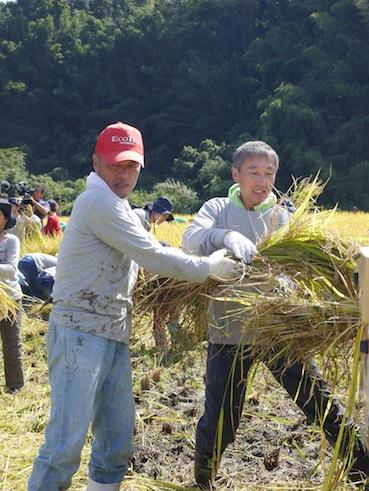 お子様向けイベント「稲刈り体験」を実施しました。_d0284244_17524486.jpg