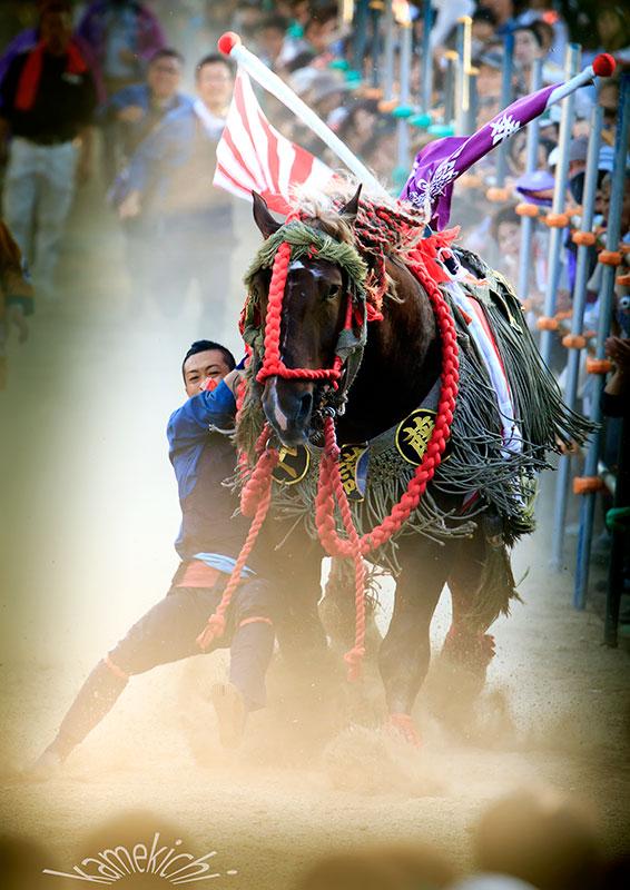 「さがり馬」に久しぶりに!_a0057752_1723387.jpg