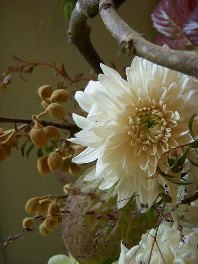 ご注文のお花たち。。。_a0229658_1092160.jpg