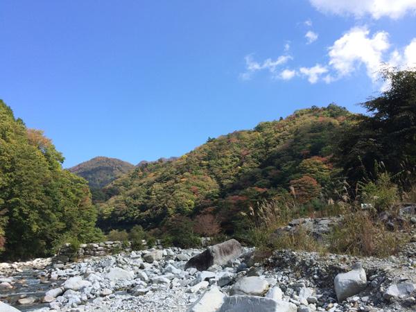 秋晴れの一日!!_c0110361_14183240.jpg