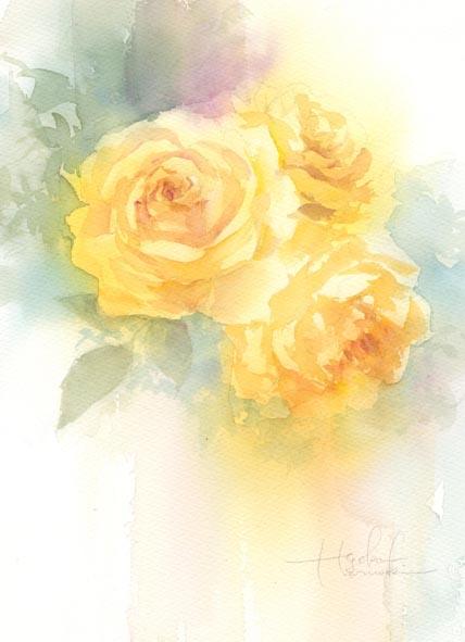 薔薇 春崎陽子_f0176370_15295947.jpg