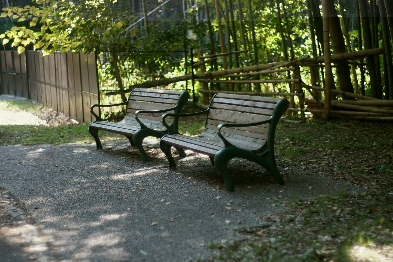 MC ロッコール PF 58mmF1.4 で 緑地公園へ_b0069128_1120346.jpg