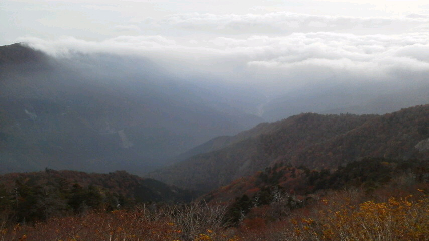 10月21日・今日もよい天気。朝の気温5℃。_c0089831_17595440.jpg
