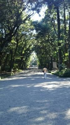 宮崎エースレーンさんでチャレンジ☆_b0259538_01275243.jpg